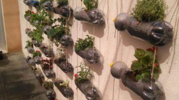 jardins-vertical_3-375x500